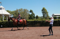 sophie coaching equestrian centre