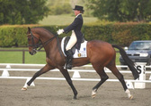 Rialto dressage become an owner